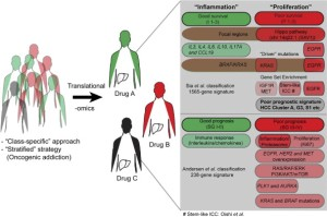Classification and characterization of ICC, and different treatment strategies for different patients, based on ICC class.
